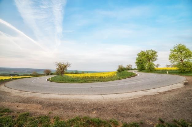 Пустая асфальтовая дорога и цветочные поля из желтых цветов