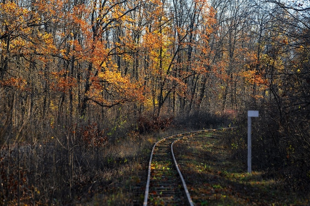 Empty autumn railway in the forest and mileage column