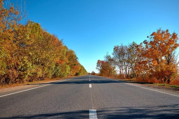 雲のない澄んだ青い空を背景に、側面に美しい木々がある空の秋の道、高速道路
