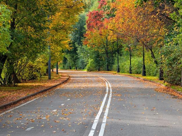 端に一列に木がある空の秋の道。