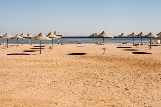 여름 시간에 빈 해변입니다. 해변의 빈 우산, 먼 전망의 푸른 하늘. 복사 공간이 있는 가로. 휴가 및 위기 개념