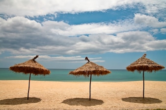 Empty beach with straw umbrellas with ocean and blue sky in background