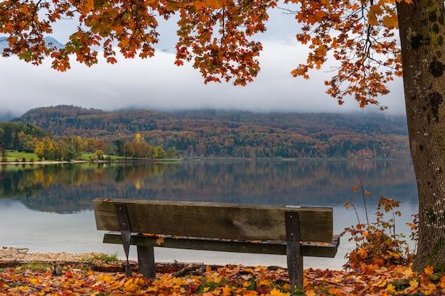 Empty bench at autumn mountain lake shore