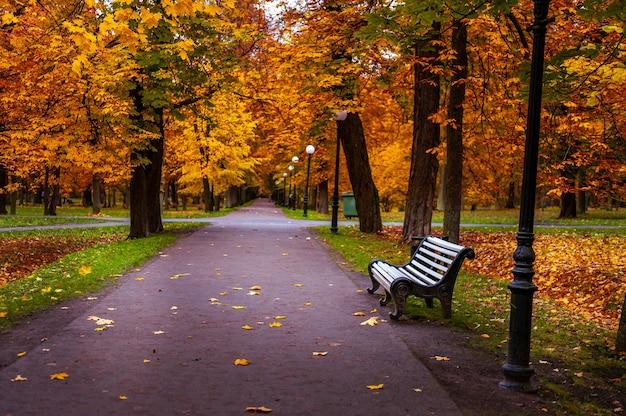 Пустая скамейка в осеннем парке. парк кадриорг, таллинн, эстония.