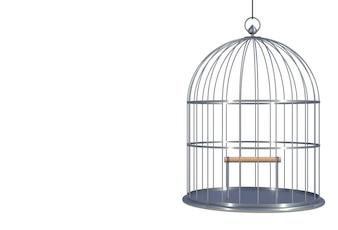 Empty bird chromium cage Isolated on white background