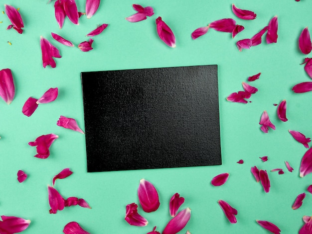 Empty black chalk board among the pink peony petals