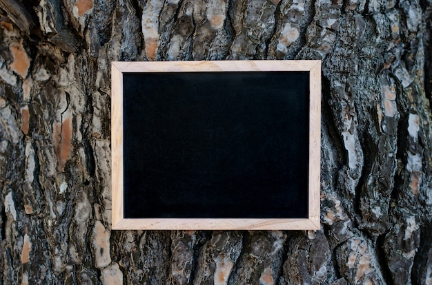 Empty blackboard hanging on the pine tree with brown textured bark