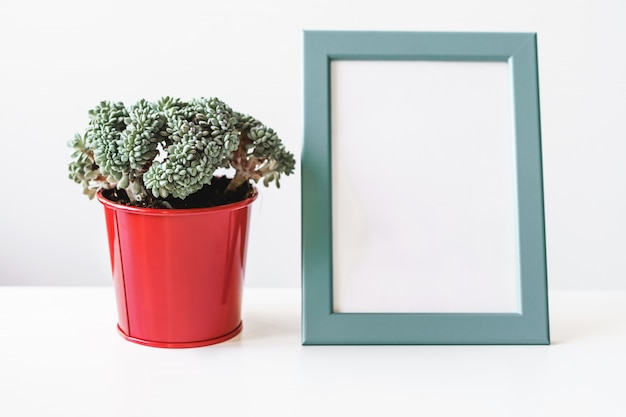 Empty blank photo frame with copy space and house plant for your design