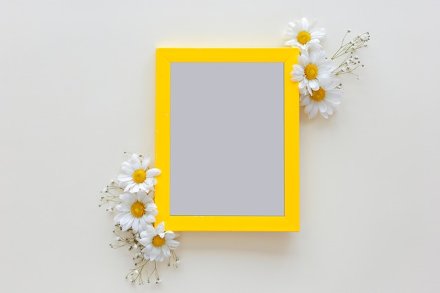 Empty blank photo frame with flower vase in front of white background