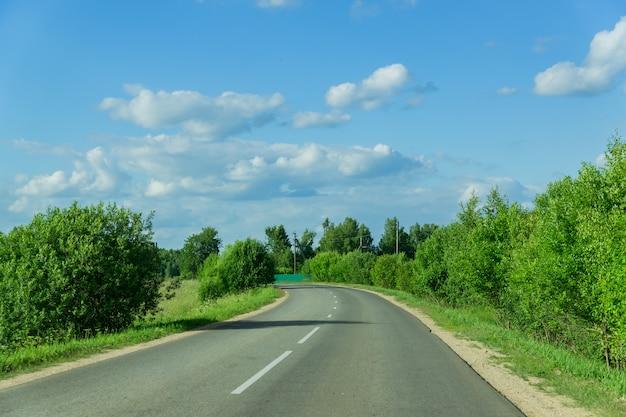ロシアの夏の日の森の中の空の車道