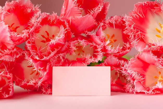 Empty card in pink tulips flowers on pink surface