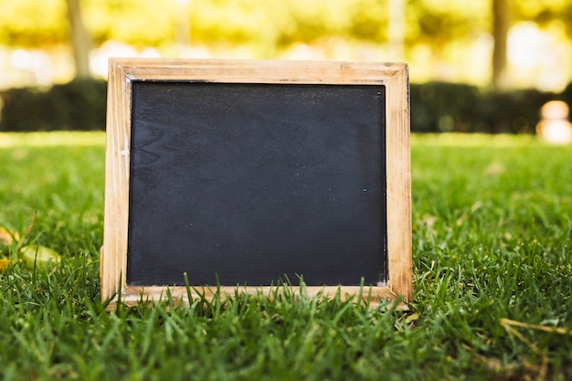 Empty chalkboard on green grass