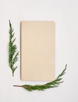 Empty christmas card with tree branches