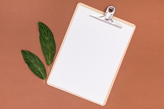 Empty clipboard mock-up with walnut leaves