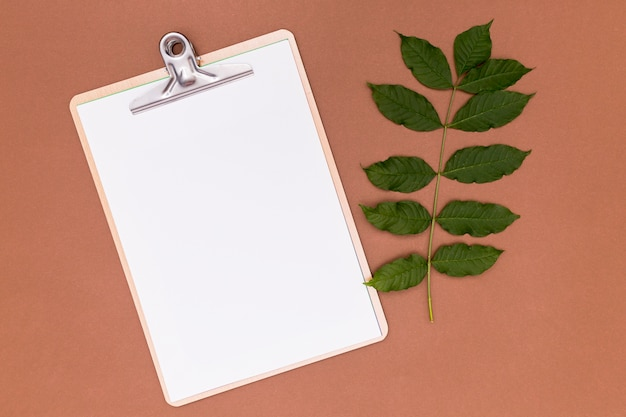 Empty clipboard with twig leaves