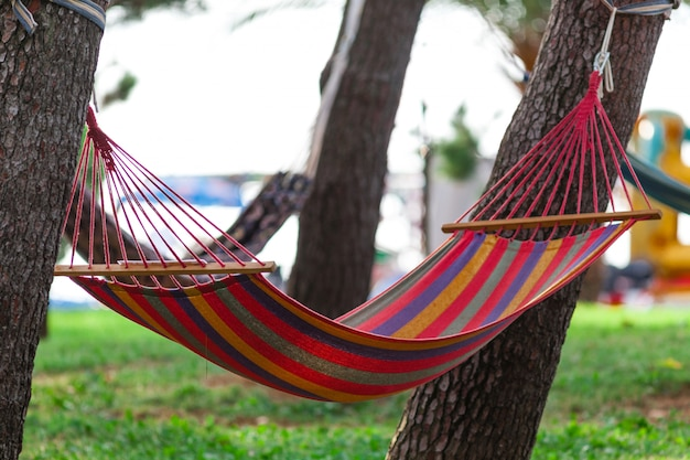 Empty colored hammock on a sunny day