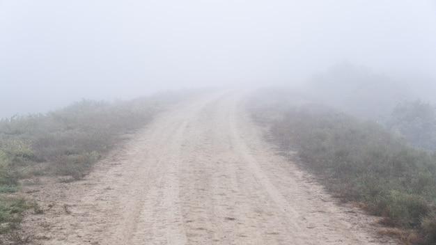 霧の中の空の田舎道