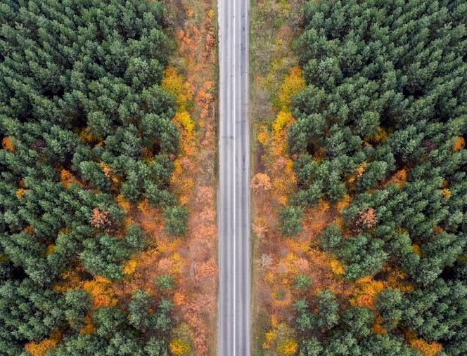 Пустая проселочная дорога в осеннем лесу с высоты птичьего полета.
