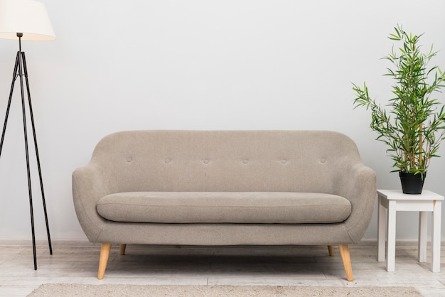 An empty cozy sofa in the living room near the plant pot on stool