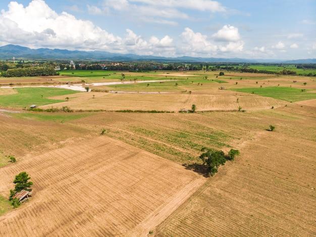 空の作物畑