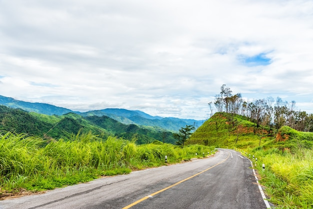 Empty cruved asphalt road on green forest on mountain with cloudy sky.