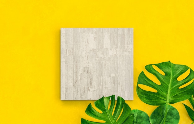 Empty cube box with tropical palm leaves for product display. flat lay. 3d render.