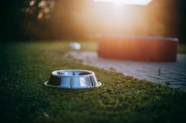 Empty dog bowl on green grass at sunlight