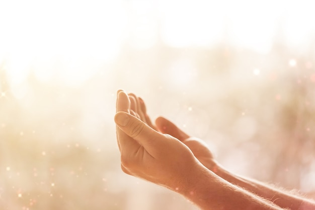 Empty female hands on blurred background