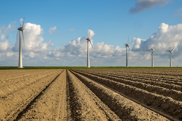 Empty field with windmills in the distance under a blue sky