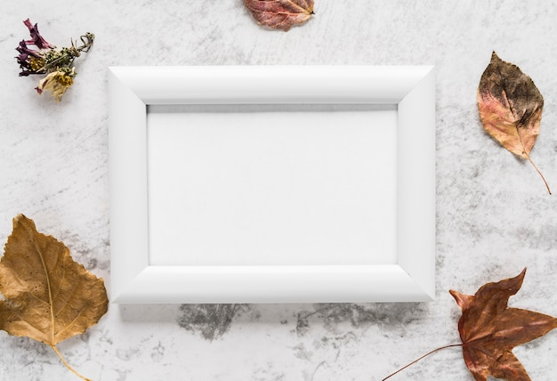 Empty frame near autumn leaves on table
