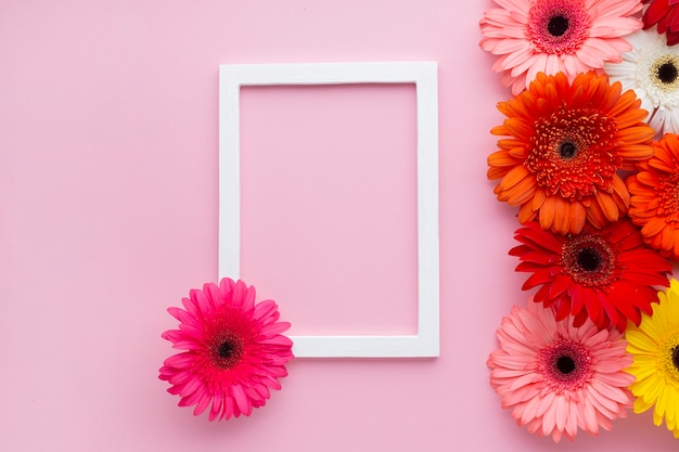 Empty frame with gerbera daisy flowers