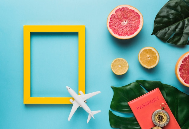 Empty frame with plane, leaves and fruit