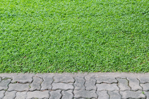 Empty gray brick with green grass for background