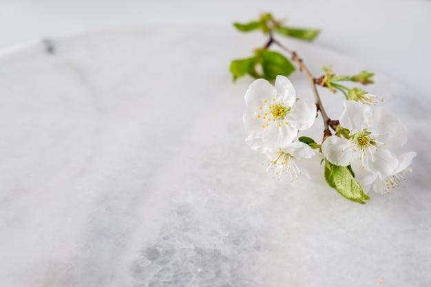 벚꽃 꽃 제품 디스플레이 빈 대리석 보드. 스파 및 바디 케어