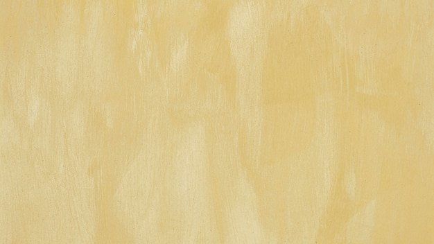 Empty monochromatic beige painted background