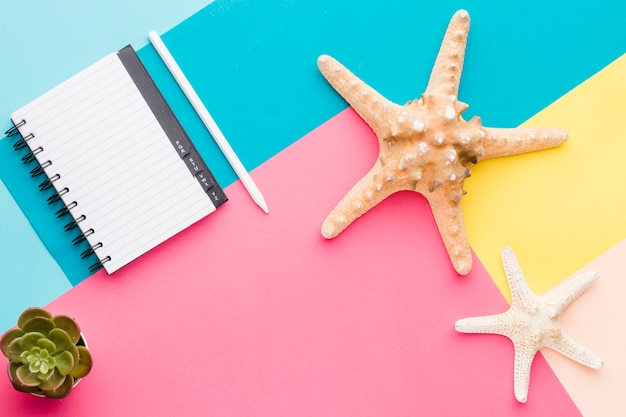 Empty notebook and starfish on multicolored surface