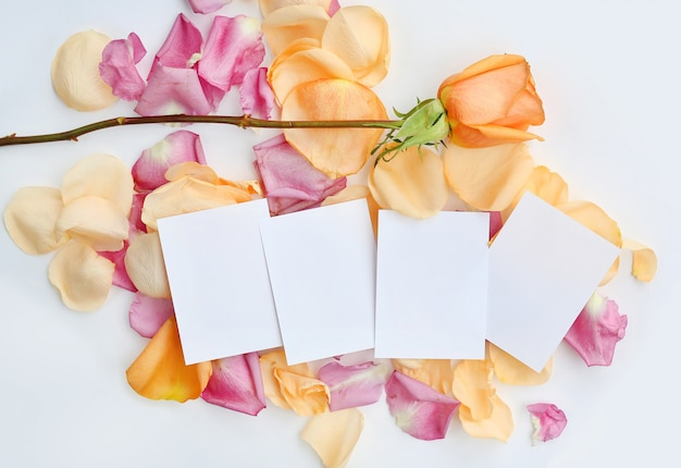 Empty notepaper with rose flower and petals on white background.