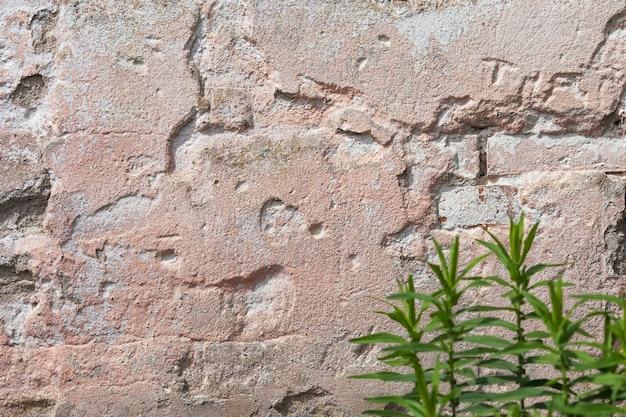 空の古い漆喰壁のテクスチャ。汚れた壁の表面を塗装しました。グランジ赤い石垣背景。石膏が損傷したみすぼらしい建物のファサード。