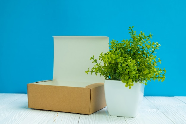 Empty package brown cardboard box or tray and little tree