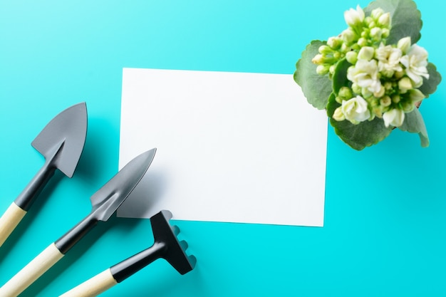Empty paper blank and gardening tools on the turquoise table