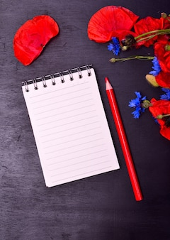 Empty paper notepad in line and red pencil