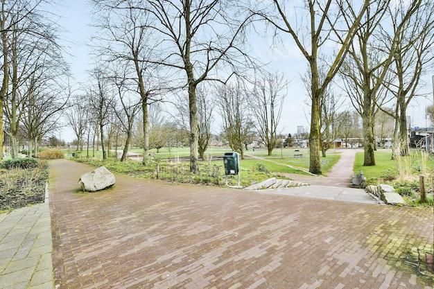春先に葉のない木々がある町の公園の石で舗装された空の小道