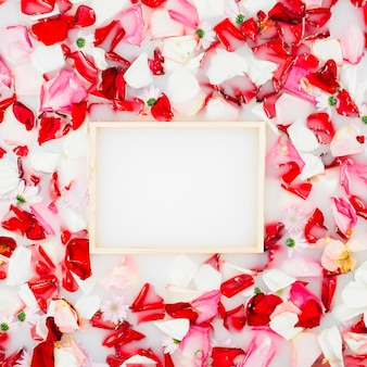 Empty picture frame surrounded with colorful flower petals