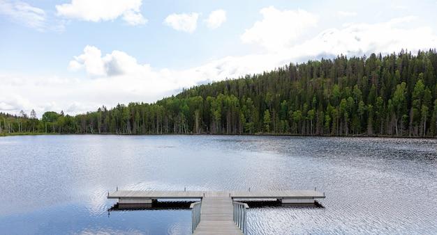 Пустой пирс на озере в лесу