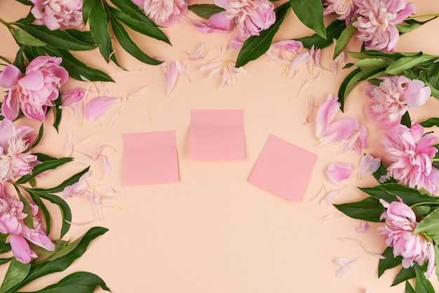 Empty pink  paper stickers on a peach background