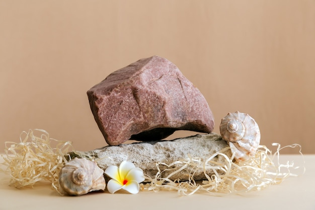Empty podium stones tower on kraft brown paper background. stones pedestal display on beige background made from seashell stones flowers mockup for product presentation.