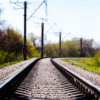 Empty railroad tracks with electric pole in a forest at sunny summer day.