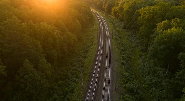 日没または夜明けに森の中の空の線路。