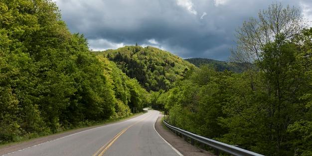 Empty road amidst trees by hills, pleasant bay, cape breton highlands national park, cape breton isl