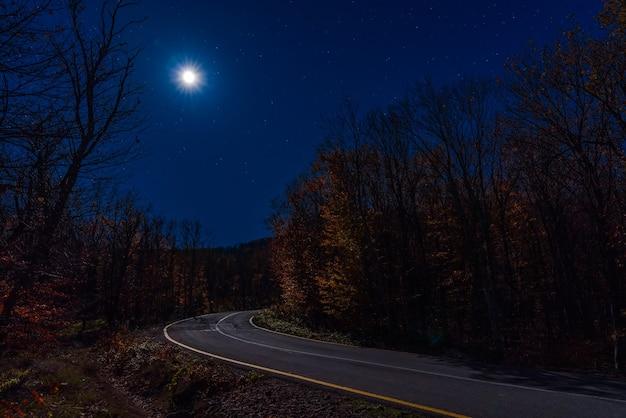 月明かりに照らされた夜の秋の森の空の道